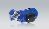 Three-Phase Geared Motors VDG 634 T with Hollow Shaft Worm Gear Unit GB 130