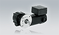 DC Permanent Magnet Geared Motors EPG 043 with Single Worm Gear Unit GF 129