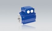 Three-Phase Motors SD 534 T