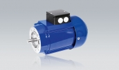 Three-Phase Motors VD 734 T